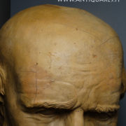antiquares-busto-terracotta-10-1